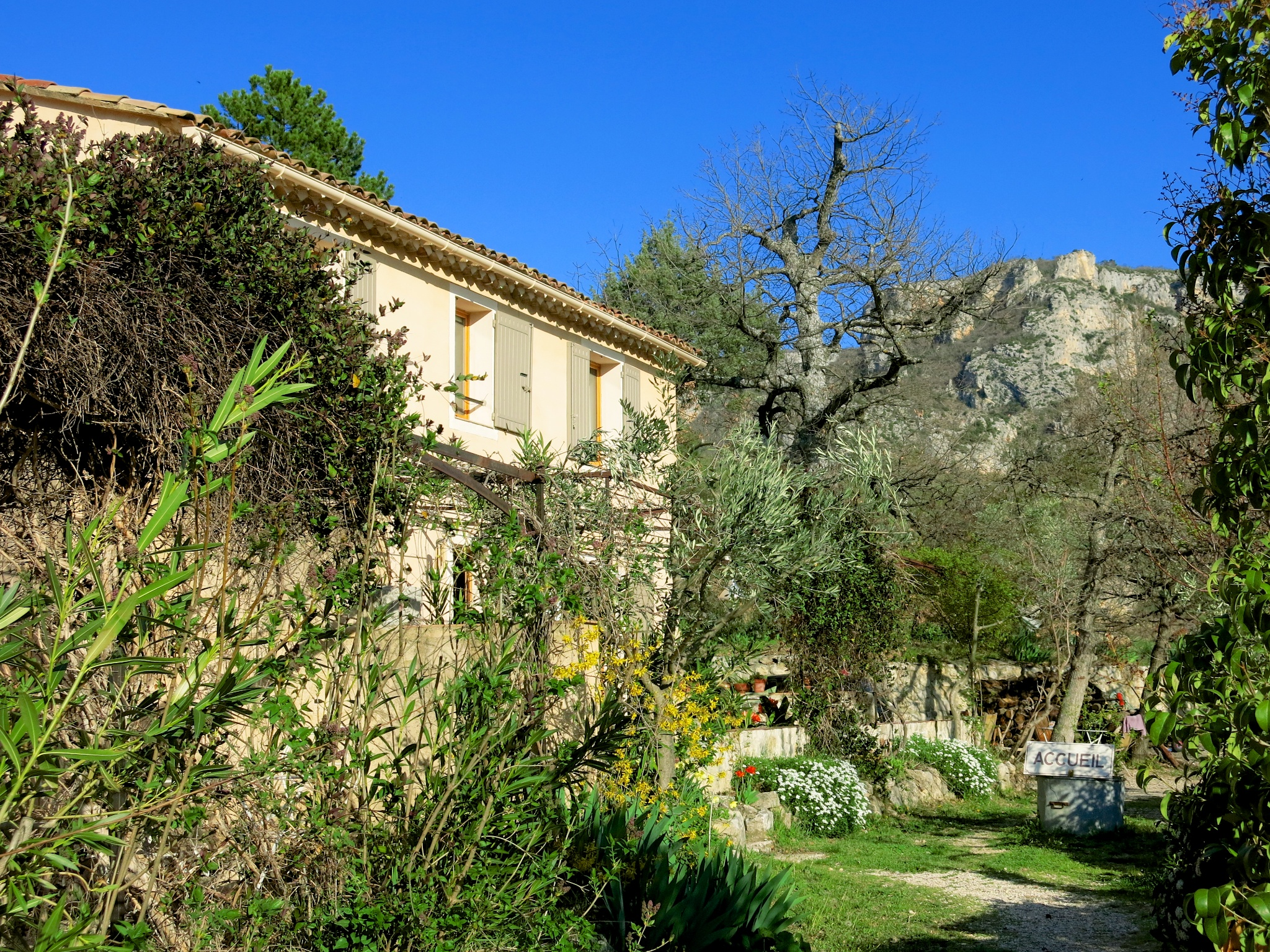 les oliviers chambres dhotes moustiers sainte marie 019 chambres